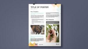 QAAFI Brand Design - Poster Template Design